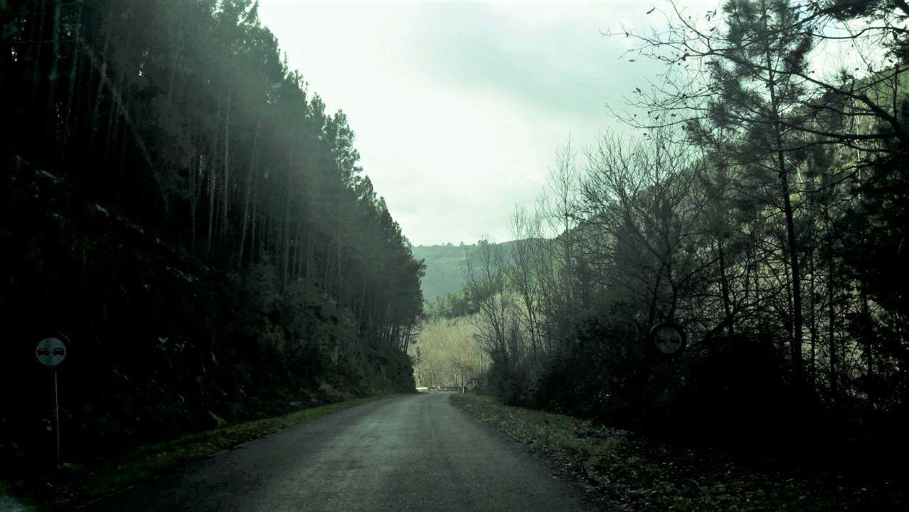 Un tramo de la carretera que conduce al embarcadero de Os Chancís, en una imagen de archivo
