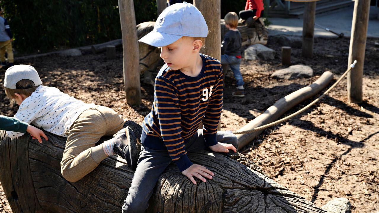 En Copenague los niños se divierten en el zoo