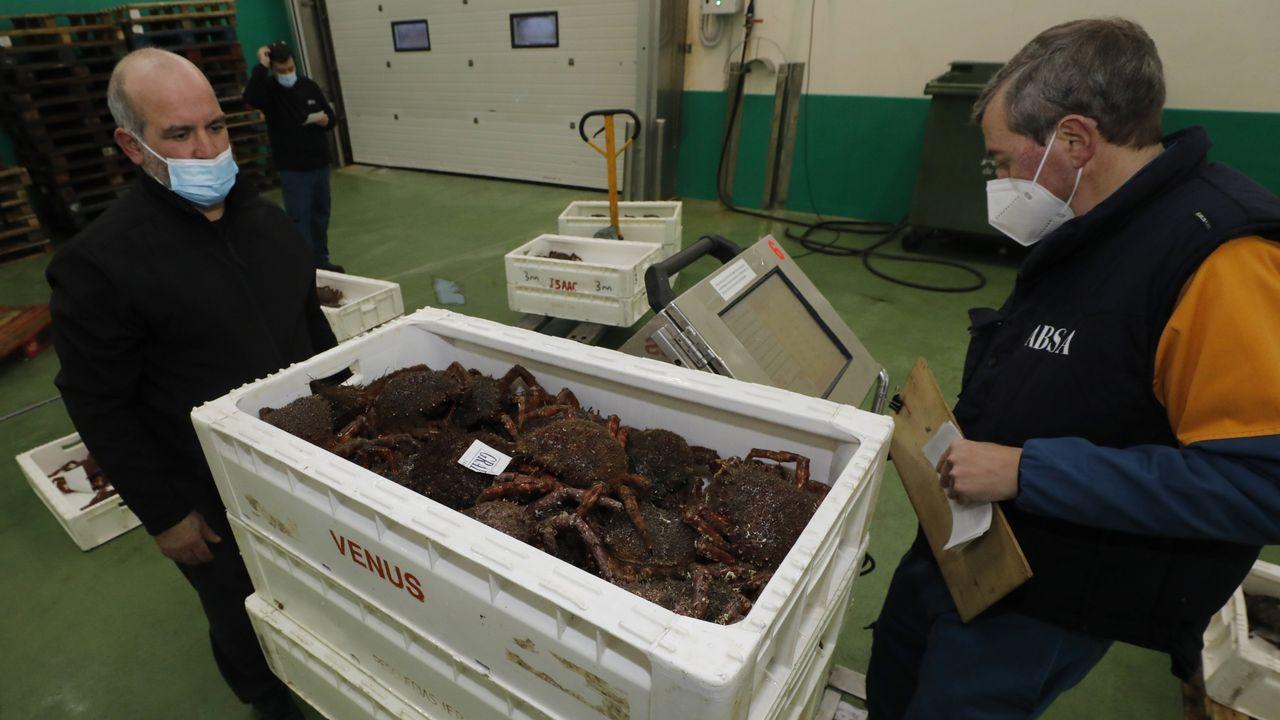 Imagen de archivo de la primera subasta de centollo y centolla en la lonja de Burela, el pasado día 1