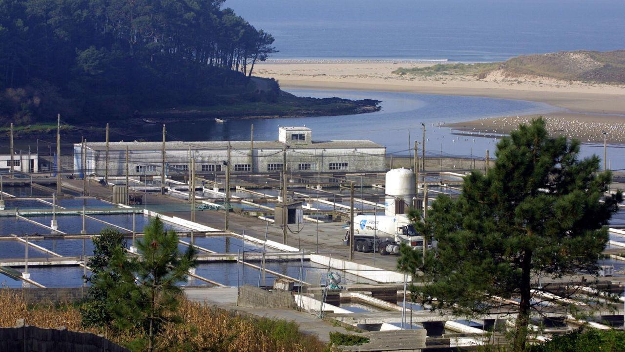 Apromar reitera su rechazo al proyecto del Gobierno que prevé cambiar concesiones en la costa, como quería hacer con esta piscifactoría de Cee (en foto de archivo), aunque finalmente rectificó y se la amplió hasta el 2056