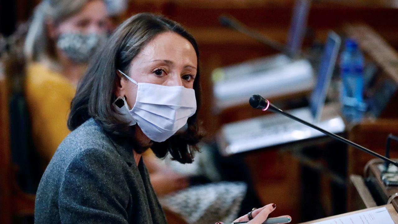 La consejera de Derechos Sociales y Bienestar, Melania Álvarez,