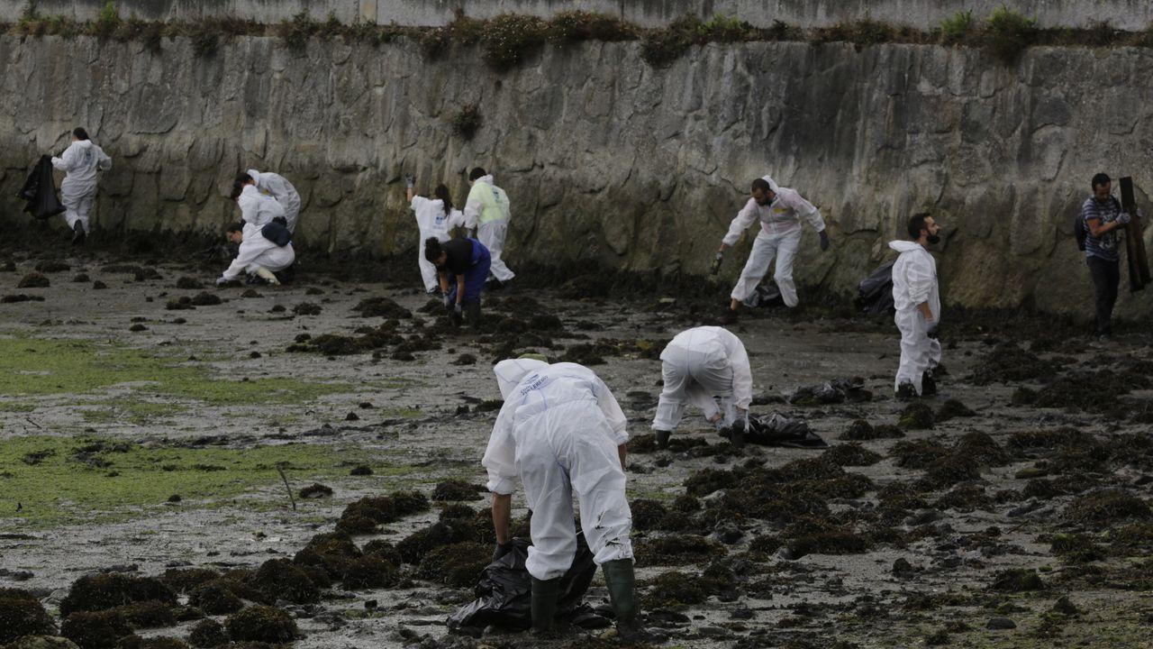 Limpieza llevada a cabo por voluntarios en la ría el domingo 6