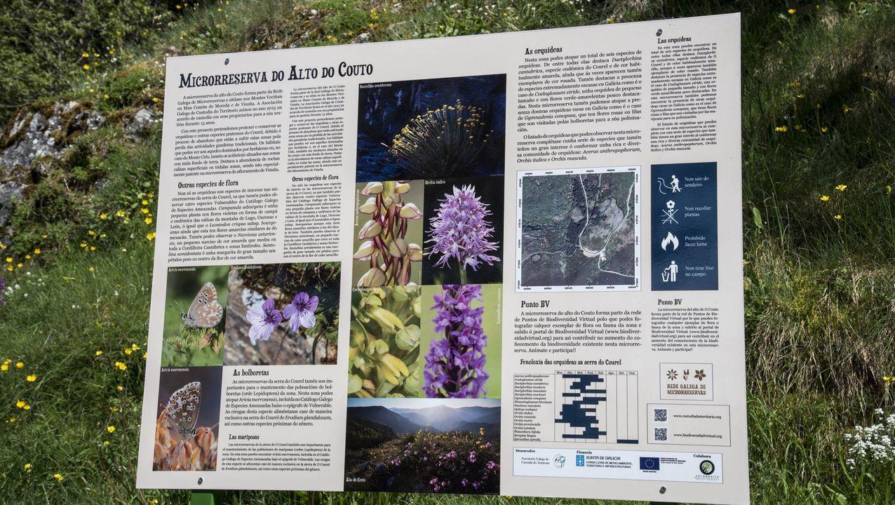 Un pane informativo en la reserva de orquídeas del Alto do Couto