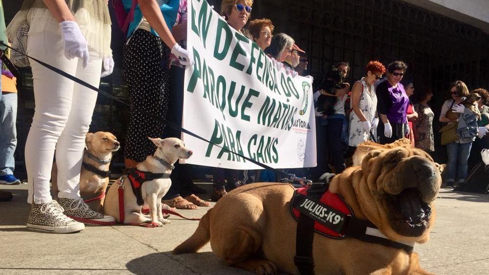 Vecinos de O Calvario reclaman un parque para perros en el barrio