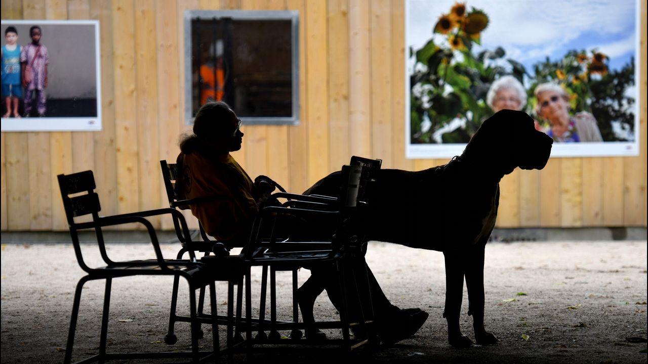 Un hombre con un gran danés descansa en un asiento del jardín del Palacio Real de París