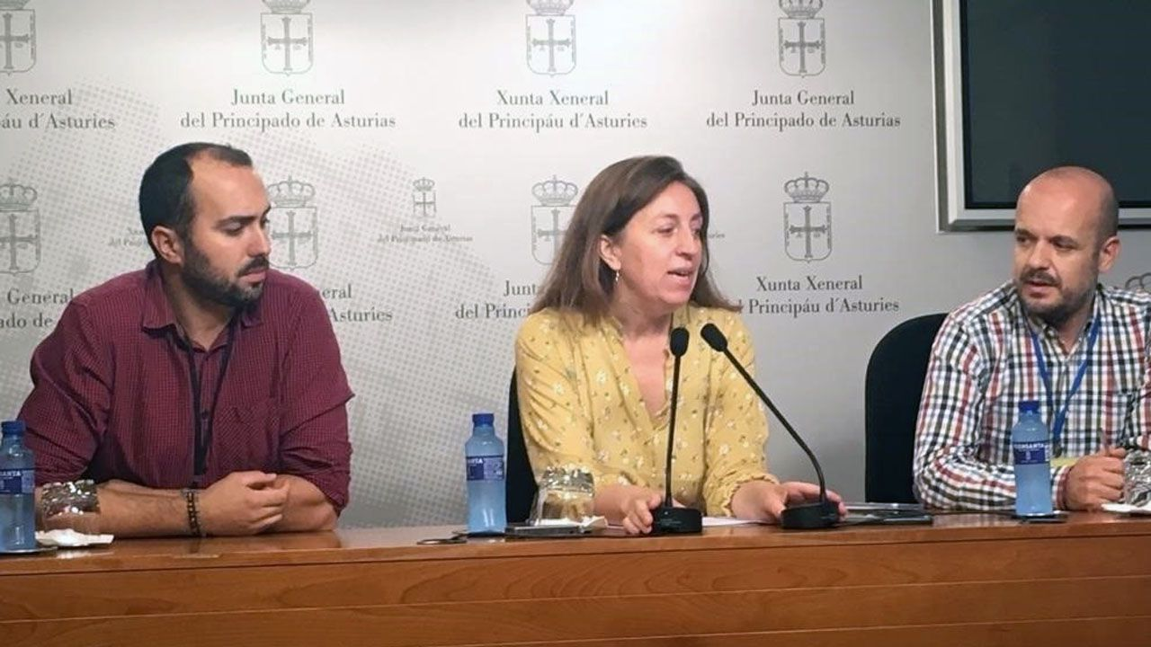 La portavoz de Podemos y representantes del Comité de Empresa de Duro Felguera
