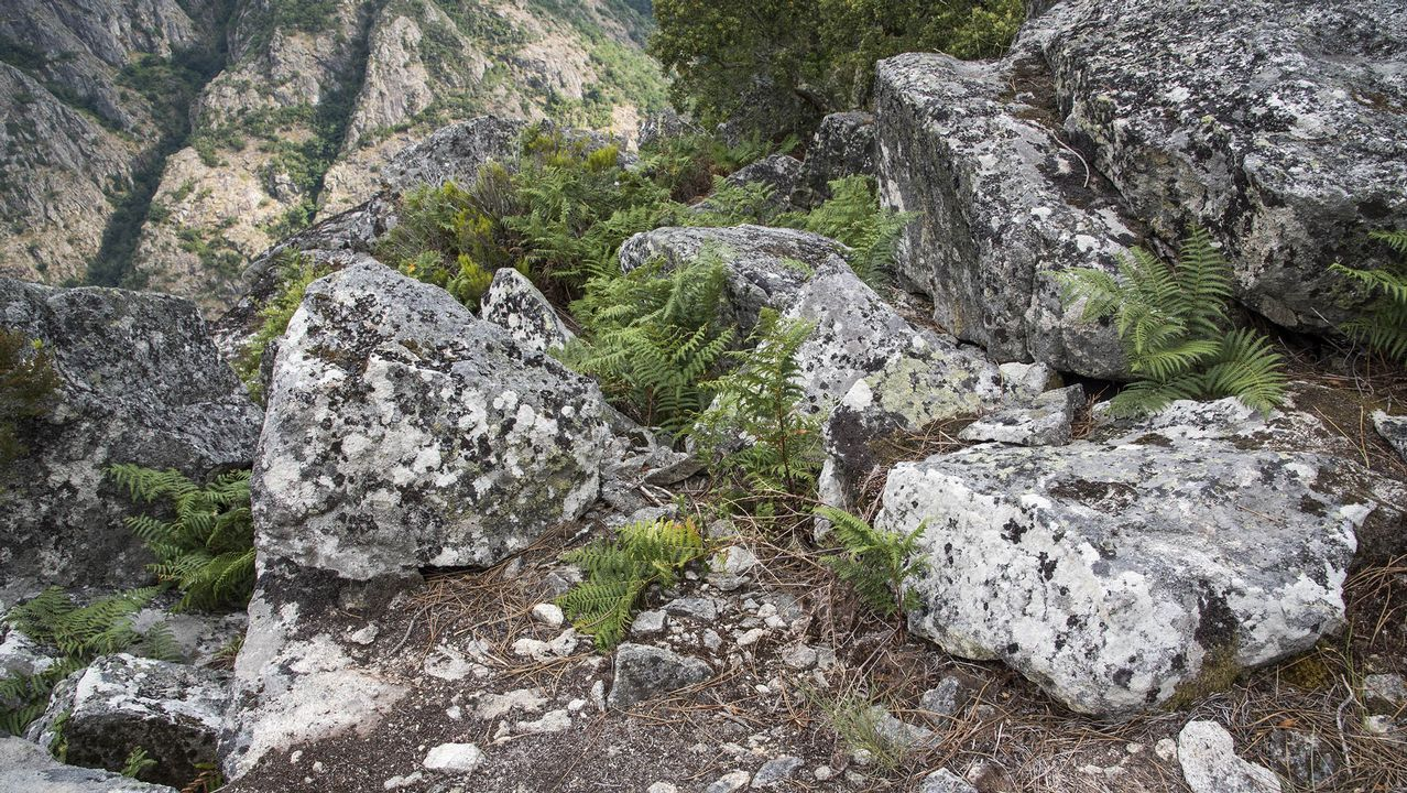 El granito de este paraje era apreciado porque no tiene vetas de otros minerales y es relativamente fácil de tallar