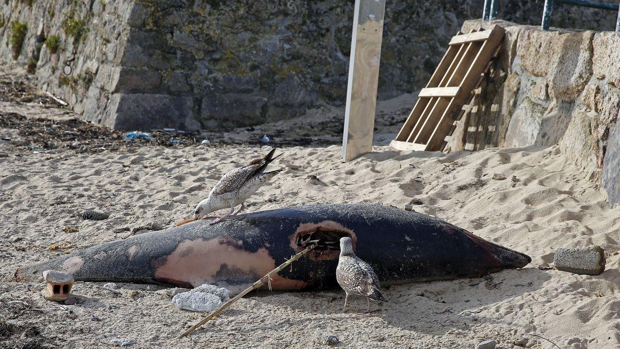 Localizan una granada en la playa de Rande.El río Piles, a su paso por Las Mestas