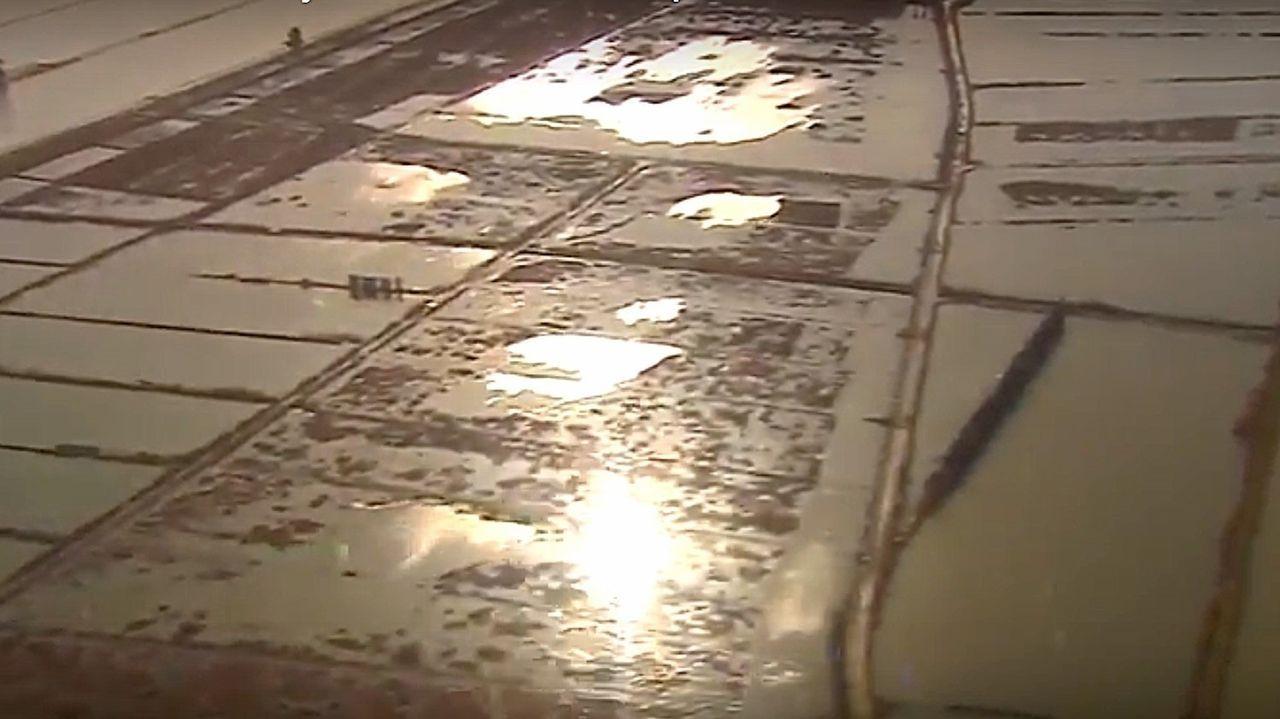 Fotograma de un vídeo facilitado por la oficina de prensa de Moncloa que muestra la crecida en la delta del Ebro en Cataluña.