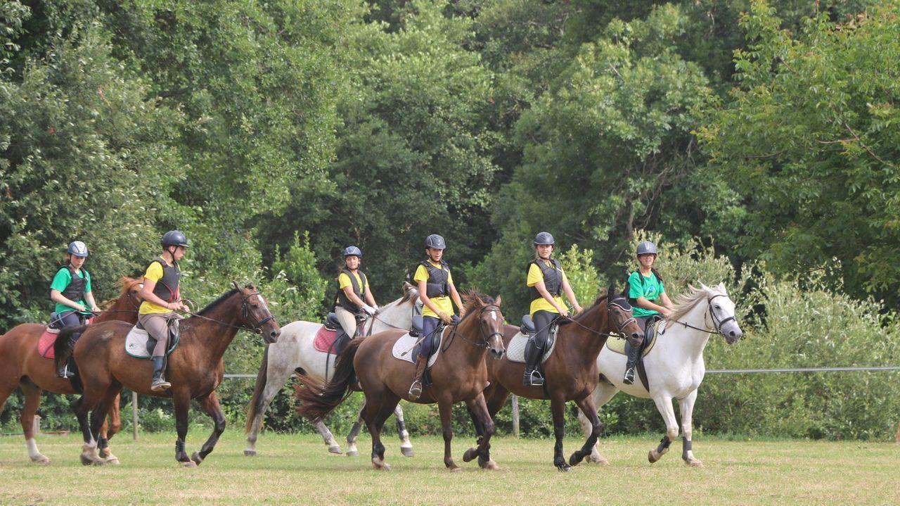 La pasión por los caballos es compartida por todos los niños y jóvenes que participan en los campamentos