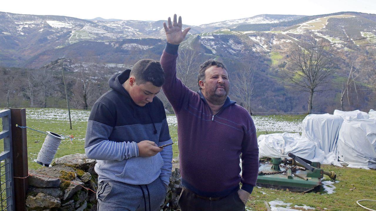 Héctor abre en el móvil el programa Abalar, mientras su padre Isidro cuenta cómo ahora para acceder a las guías para llevar los becerros al matadero tendrán que pasarse por Internet.