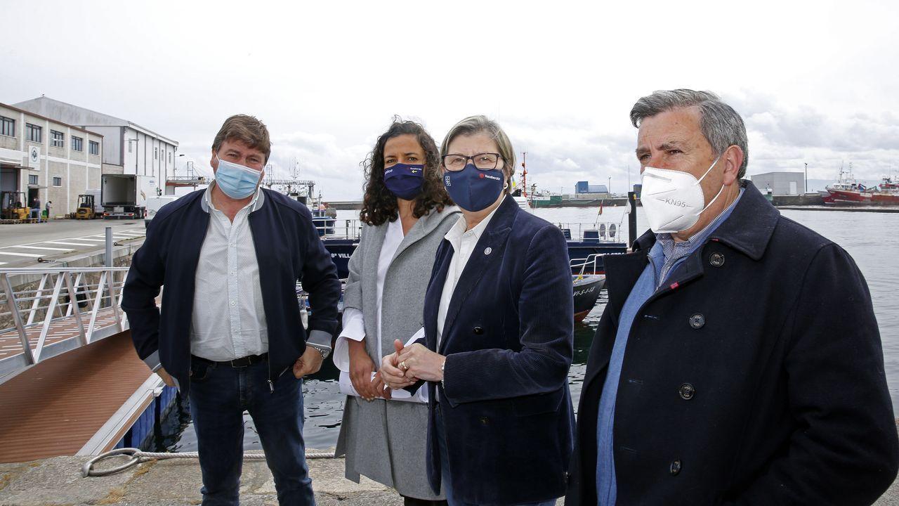 En directo: Comparece la ministra de Sanidad.José Pérez, Susana Lenguas, Rosa Quintana y Manuel Ruiz