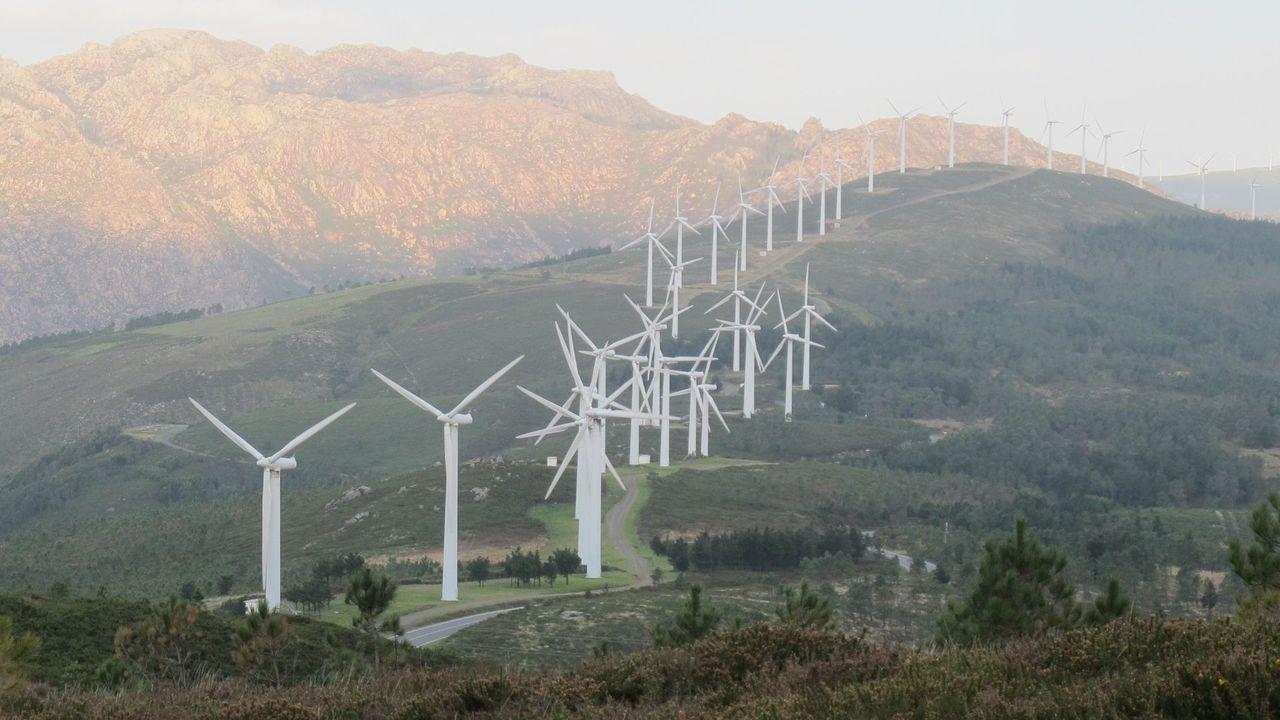 Entrevista á Conselleira de Medio Ambiente Ánxeles Vázquez.Fotografía de un parque eólico ubicado en el término no Mazaricos