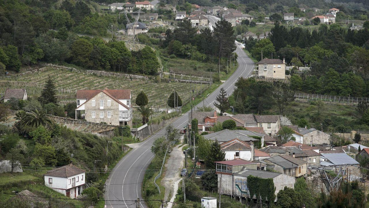 La Sociedad de Beneficiencia Naturales de Galicia, en la actualidad