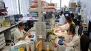 Trabajadores de Health in code, este viernes en la sede de la firma en Oza