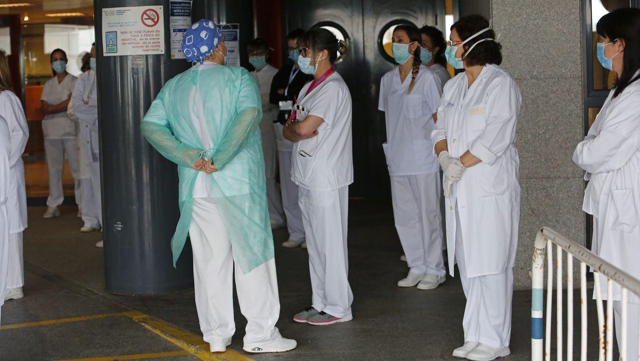 Perro atacado por otros en la protectora de Pontevedra debido a la masificación.Trabajadores sanitarios, en la entrada del Hospital Montecelo de Pontevedra
