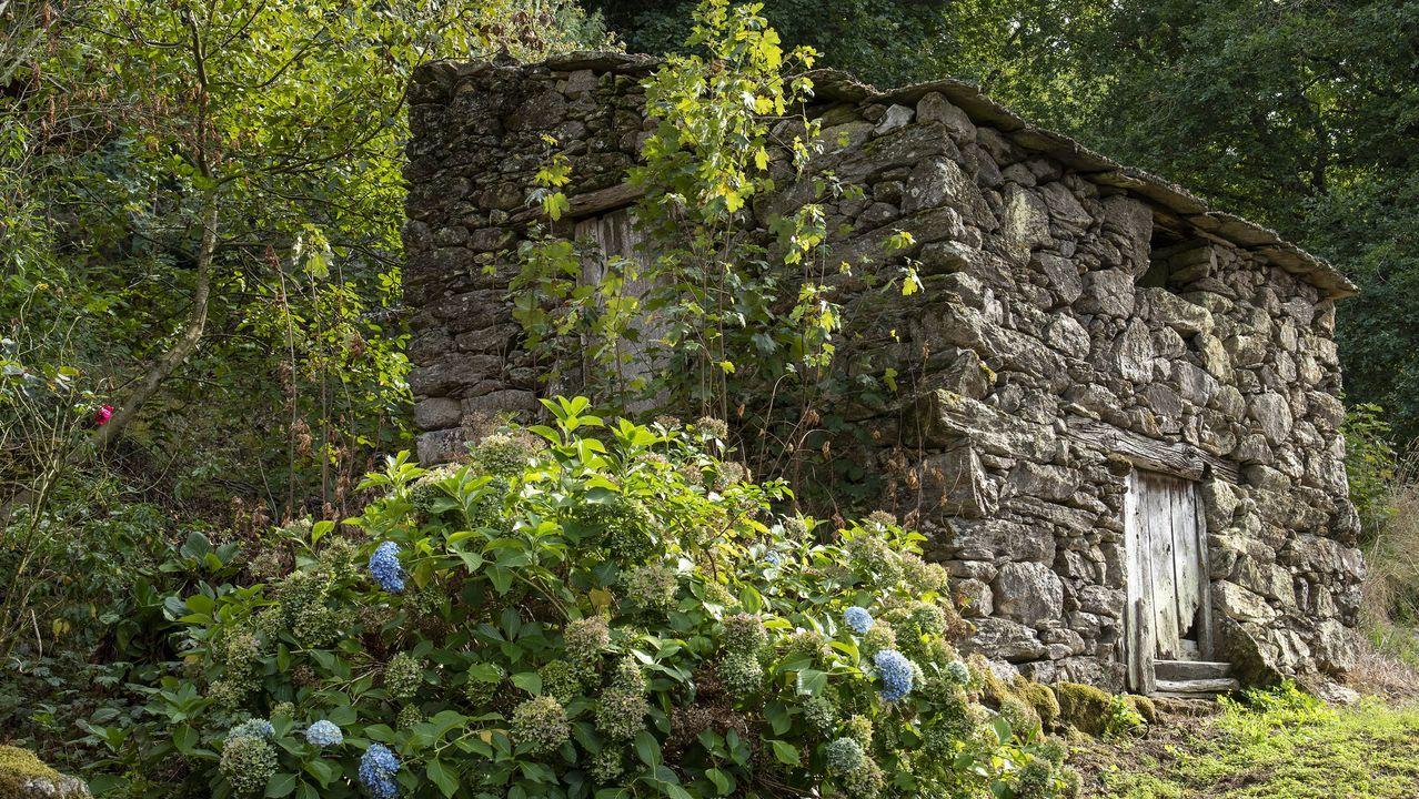 Una de las antiguas bodegas conocidas con el nombre común de Burrela