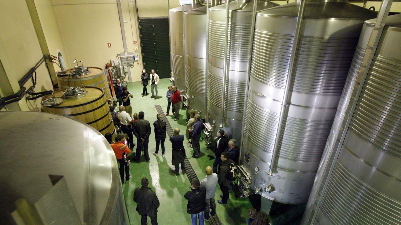 Un grupo de visitantes en la bodega Regina Viarum de Sober durante una edición anterior de las jornadas de puertas abiertas de las rutas del vino