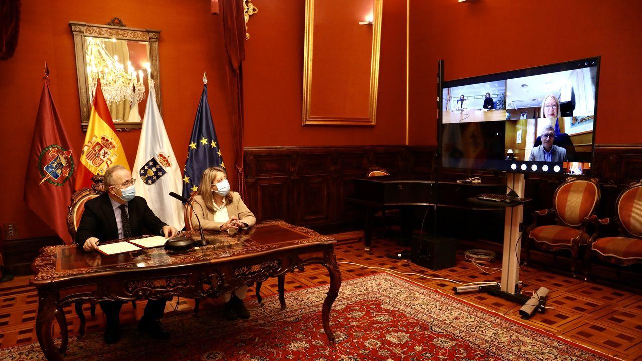 La firma del convenio se hizo de forma telemática desde las sedes de las tres administraciones