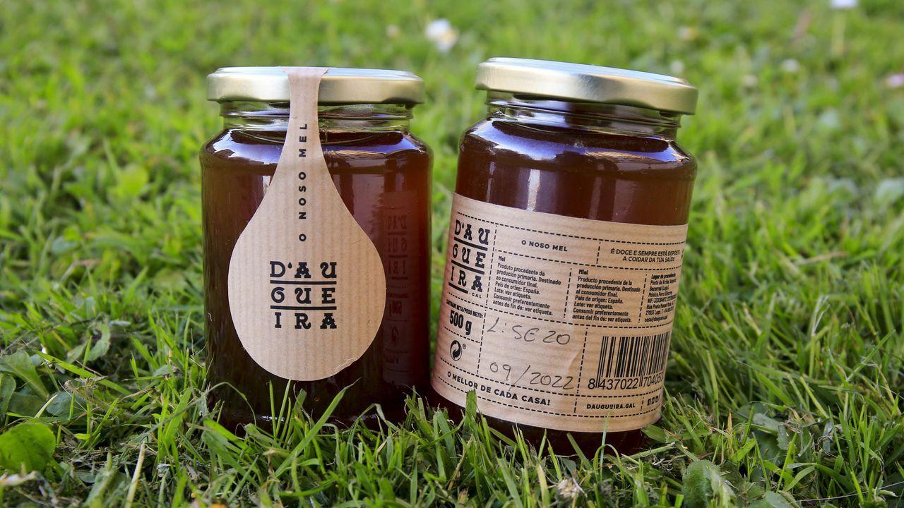 Daugueira es también la marca propia de miel elaborada por Mónica Ferro en las montañas ubicadas entre Becerreá y As Nogais