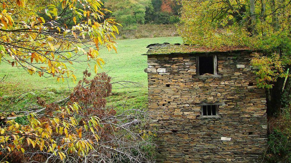 Antigua cabaña agrícola en la zona de O Corgo
