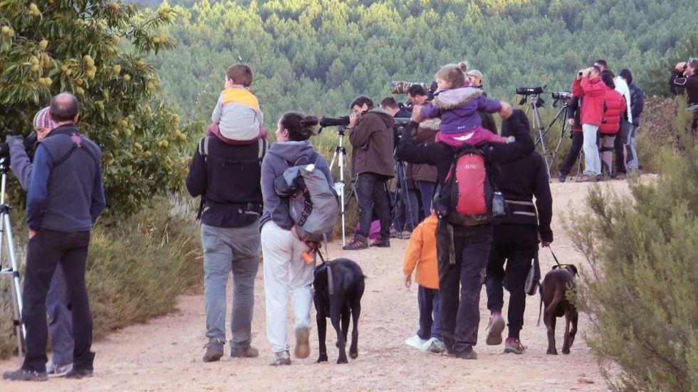 Imagen de la guía del Ministerio de Medio Ambiente sobre el turismo de observación y naturaleza, de J. Talegón.Imagen de la guía del Ministerio de Medio Ambiente sobre el turismo de observación y naturaleza, de J. Talegón