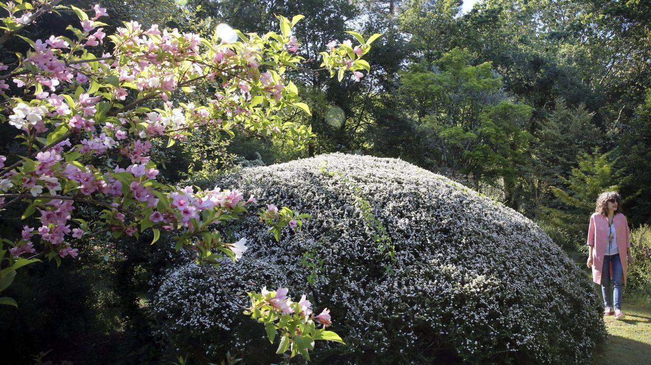 Jardín de la Saleta (Meis)