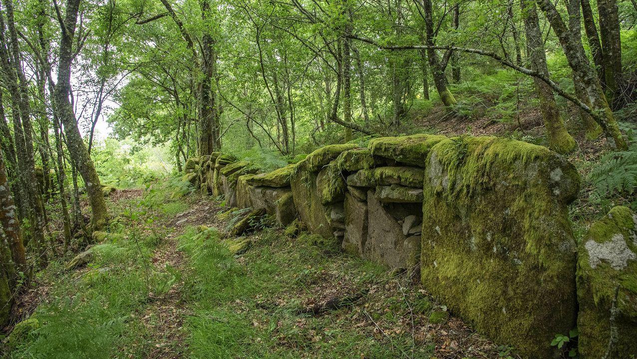 En el camino de A Campaza a Luíntra abundan las formaciones rocosas de aspecto peculiar
