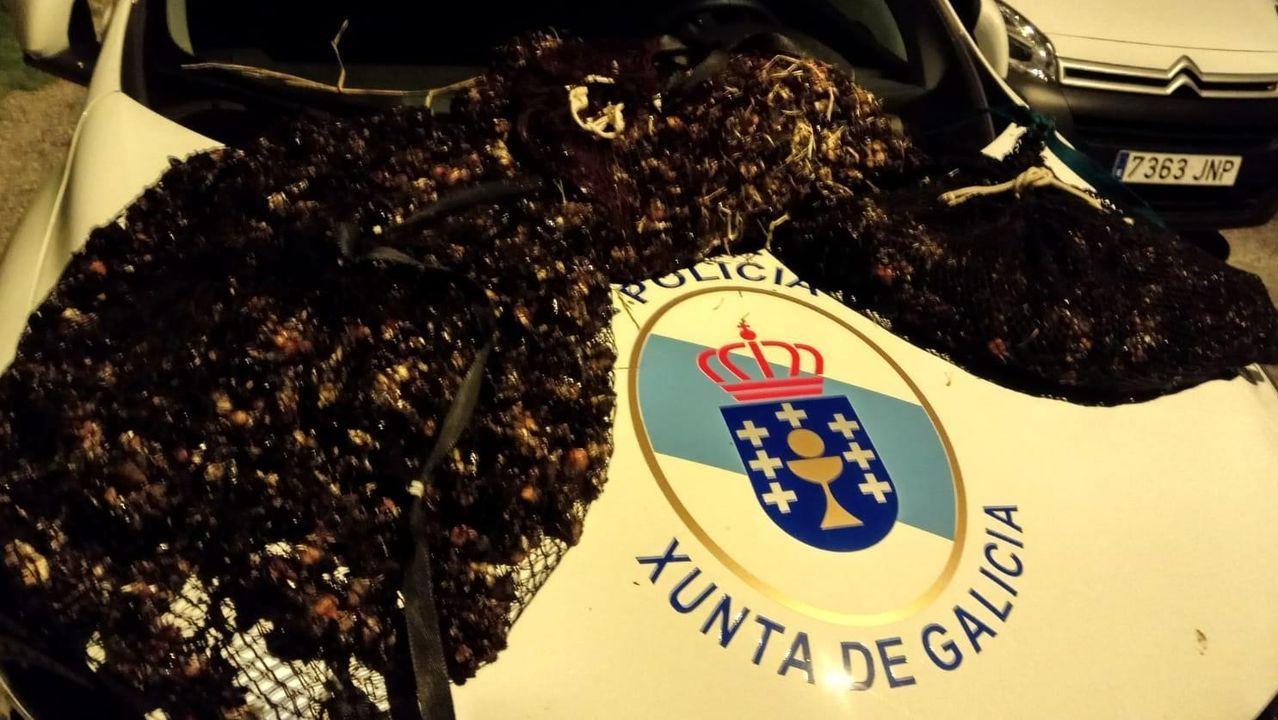 387 civiles juran bandera en el puerto de Vigo.Castillo de Monterreal, Baiona.