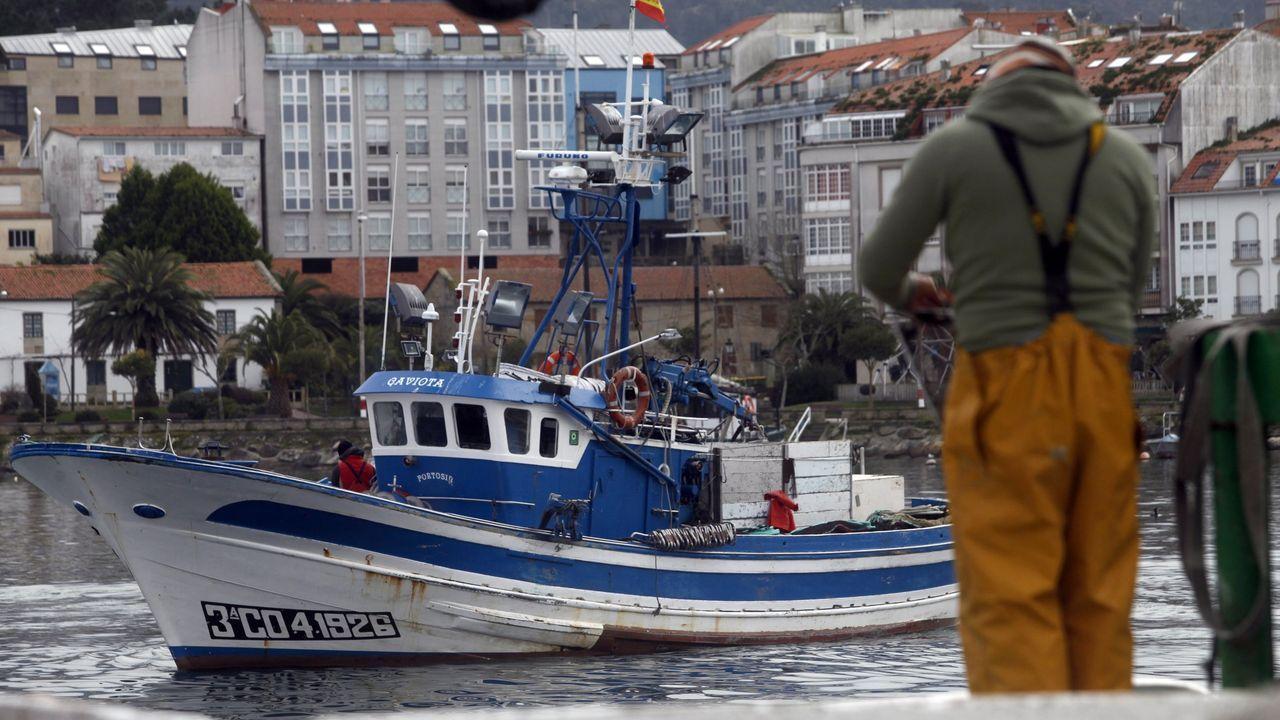 Un cerquero de Portosín atrapó en sus redes una tortuga laúd.O incendio de Porto do Son foi un dos peores deste verán en Galicia