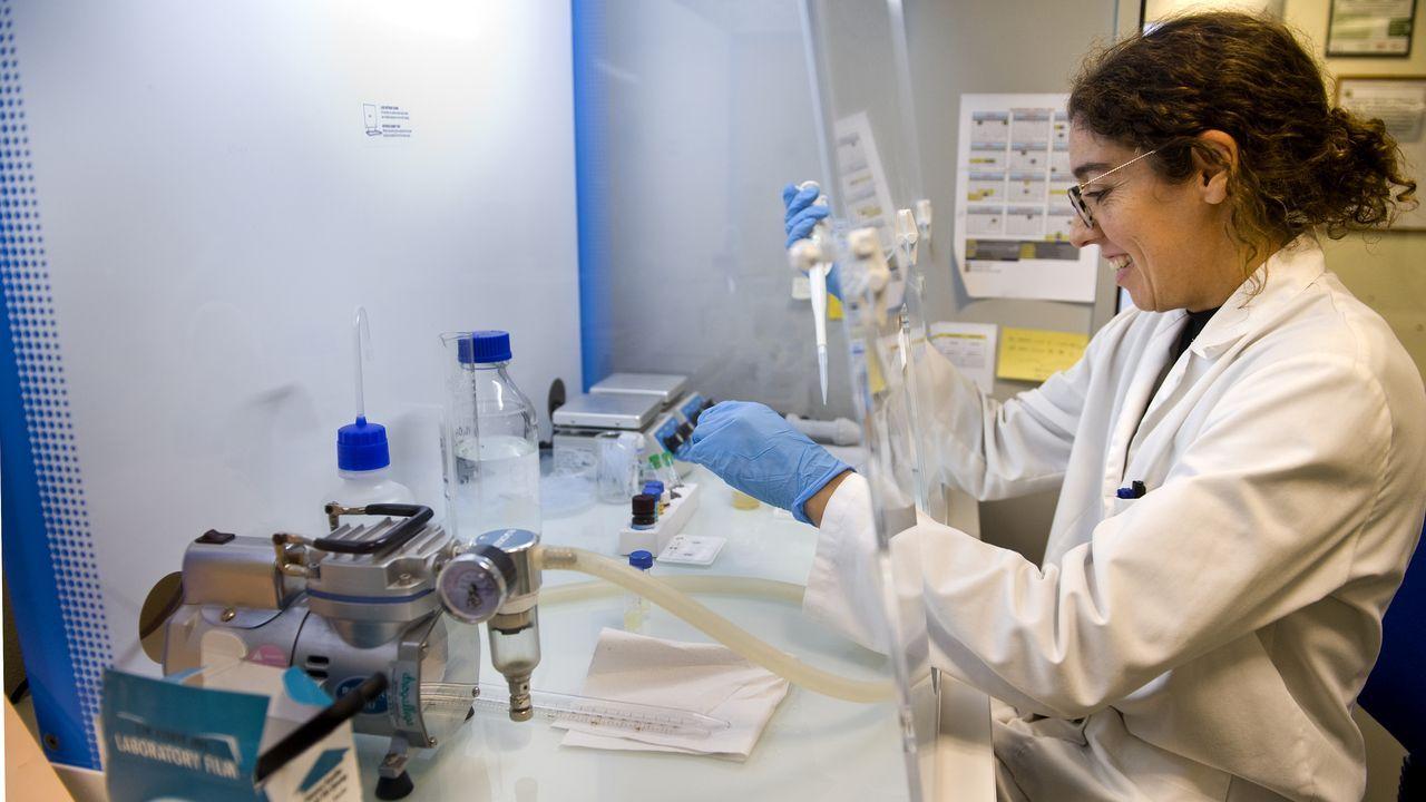 Los laboratorios de Agafac en el puerto analizan cada día muestras de cereales importados