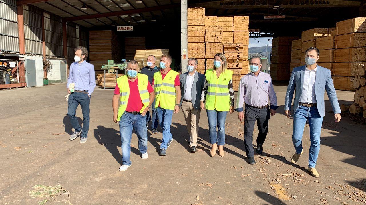 Visita al aserradero Hijos de Ramón Rubal, en Alfoz, donde se prepara el tablero de madera autóctona para levantar el edificio Impulso Verde de Lugo