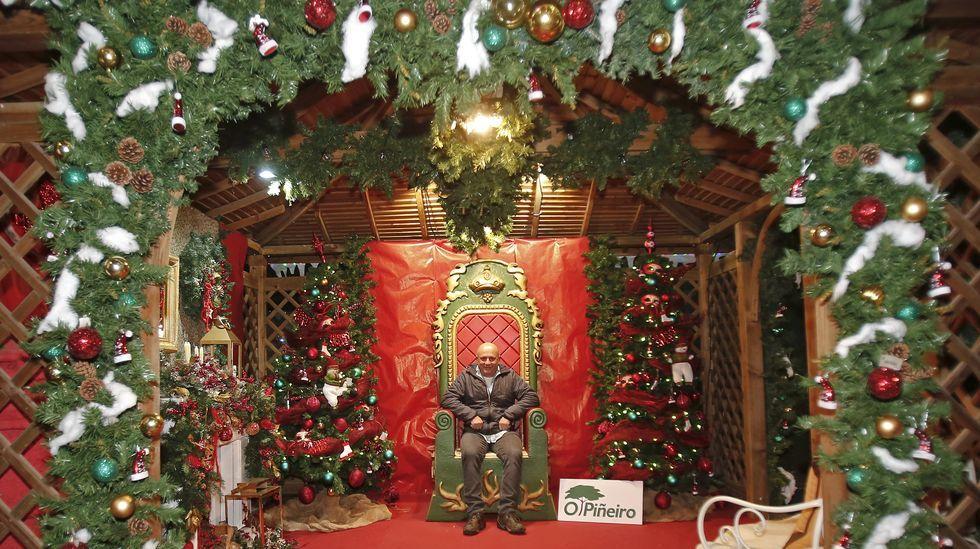 El vivero de la Navidad.Un mercado navideño estará abierto en la plaza de abastos entre los días 21 y 22
