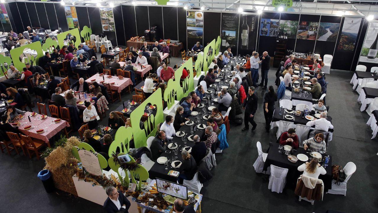 Miles de ciudadanos cruzan la frontera por un plato de comida.Obras de humanización en Vía Norte