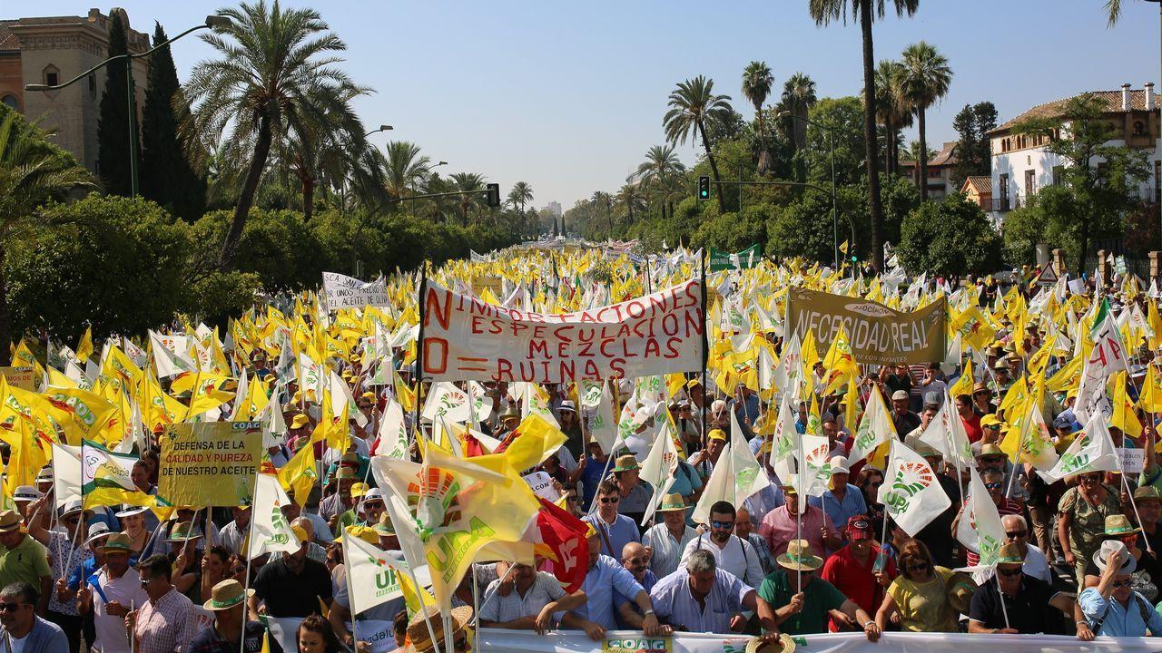 Miles de agricultores andaluces tomaron las calles de Sevilla pidiendo precios justos para su aceite