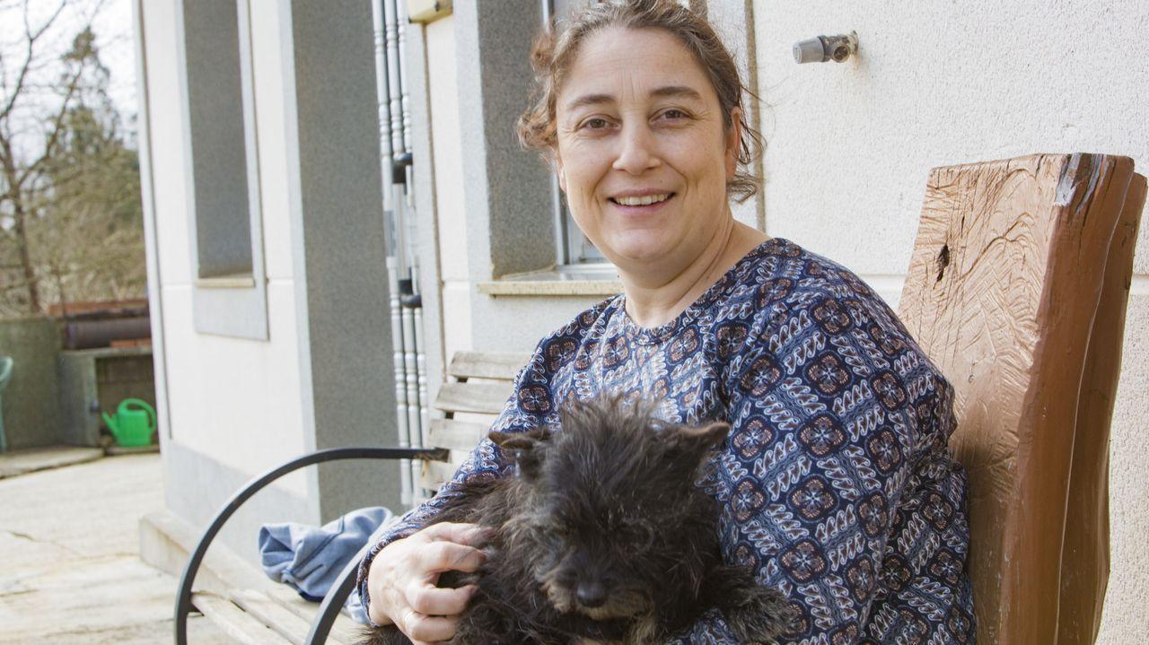 Sesión de musicoterapia con perros recien operados.Monte se considera una «afortunada»