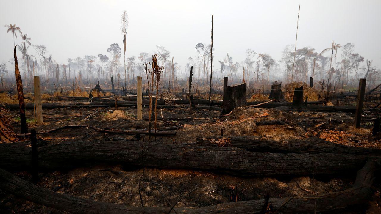 Imagen de los incendios del Amazonas en Boca do Acre, en Brasil