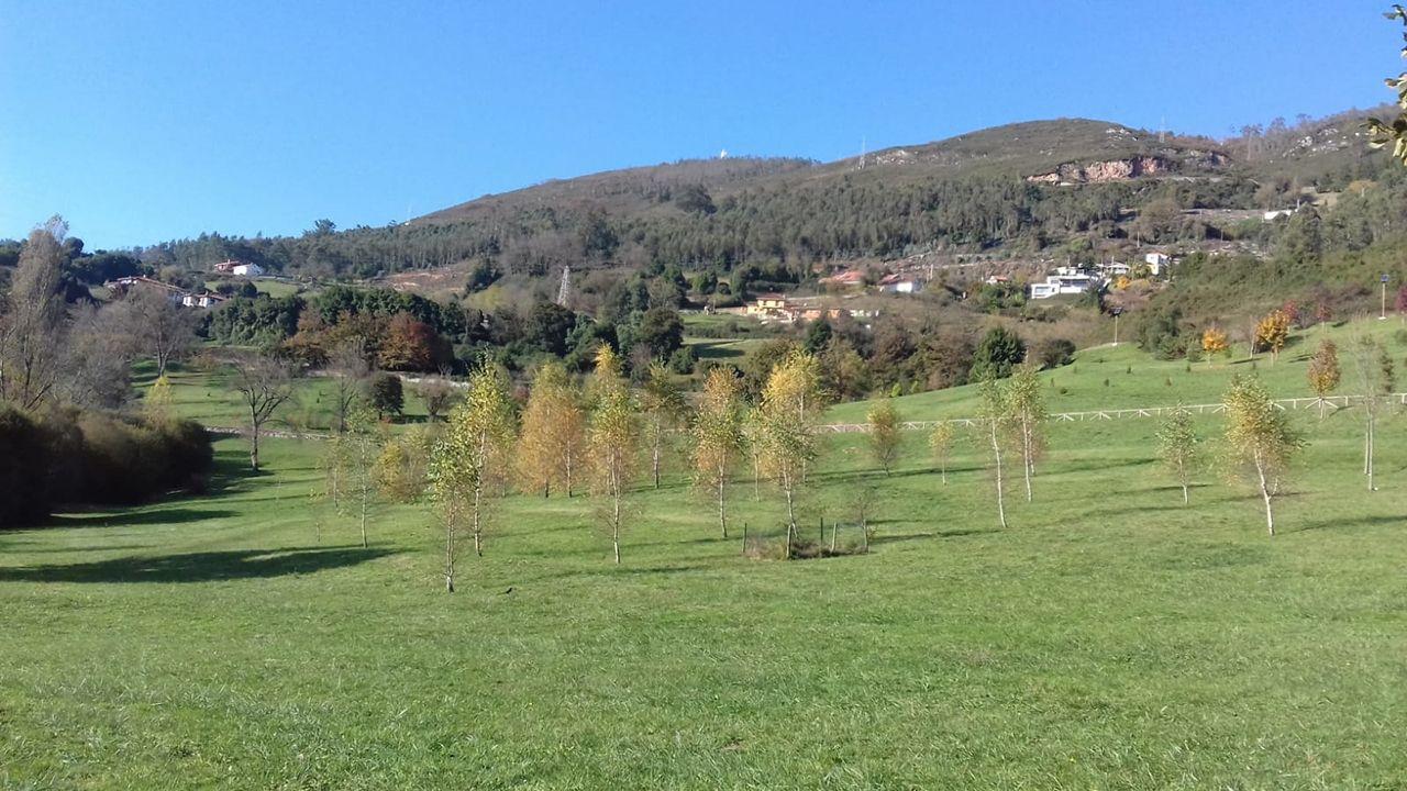 Monte Naranco, Oviedo