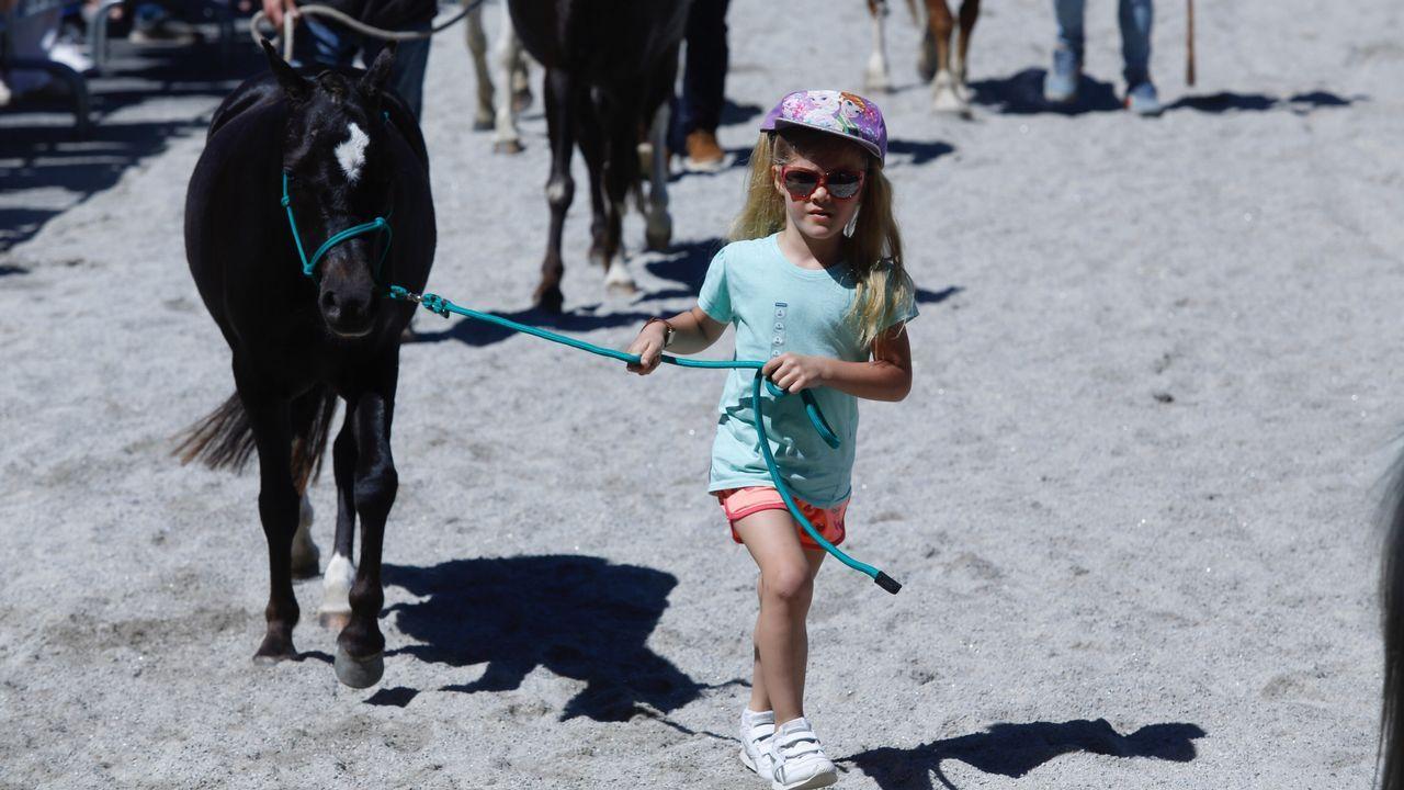 Los caballos vuelven a reinar en Amio