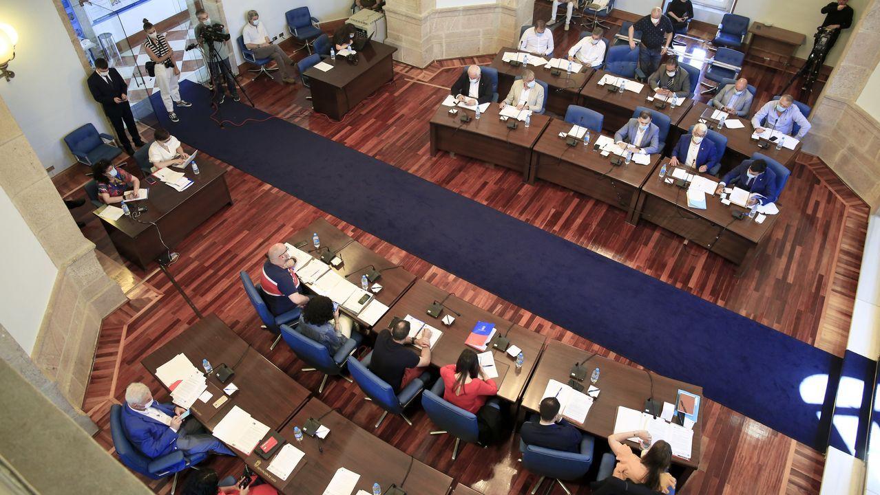 La Diputación celebró el primer pleno presencial desde que se declaró el estado de alarma
