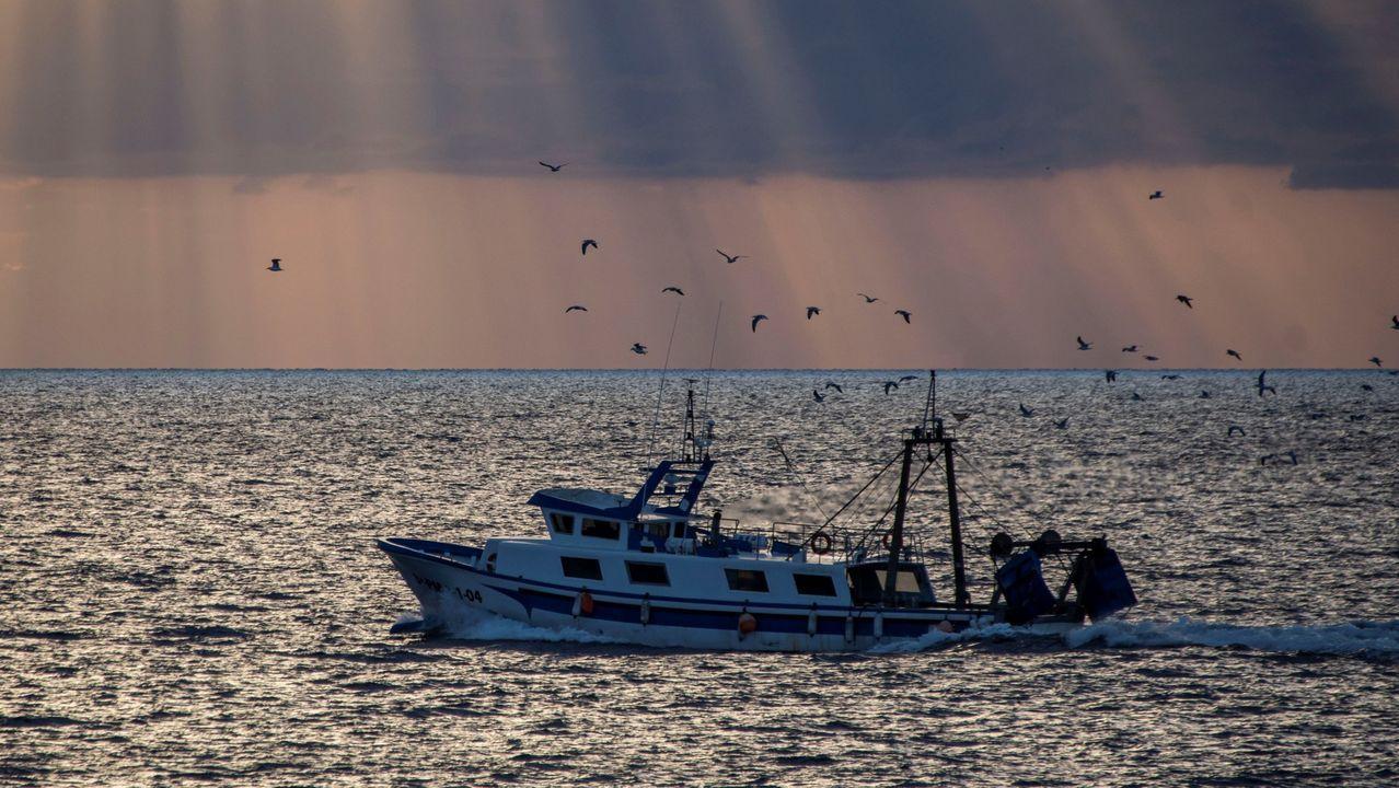 Vídeo: Oportunidades para el sector del mar en tiempos de covid.Felipe F. Casanueva, Gabriela González y José Ramón Lete participan en la mesa redonda