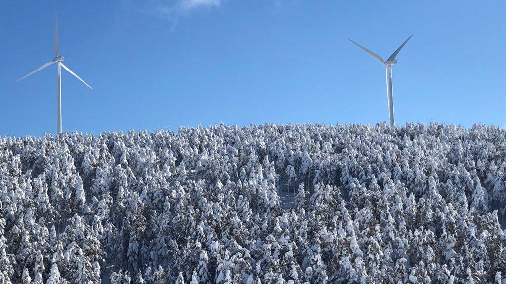 Vistas de la nieve en Tineo