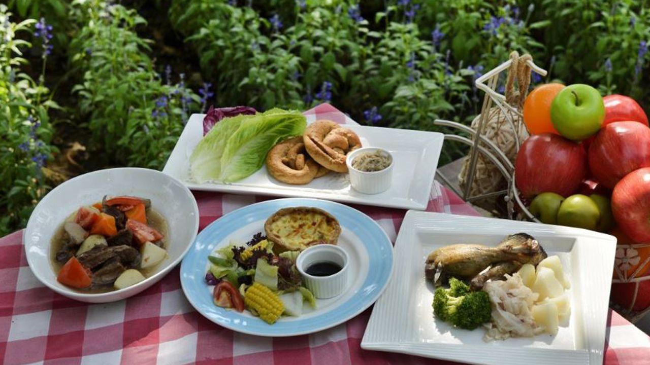 Platos sanos para comer al aire libre
