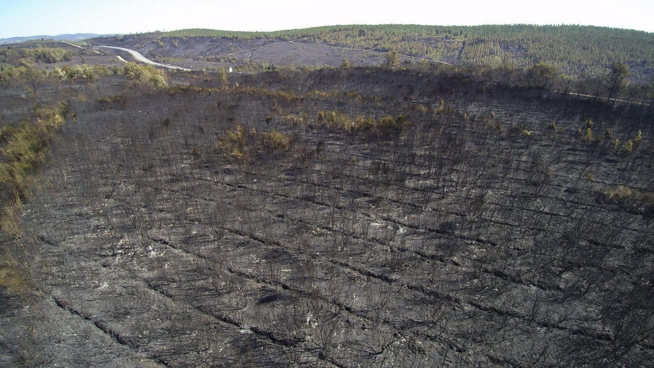 Las llamas devoran el monte en Culleredo.Terrenos quemados en el incendio del pasado jueves en la parroquia de Mañente, en Pantón