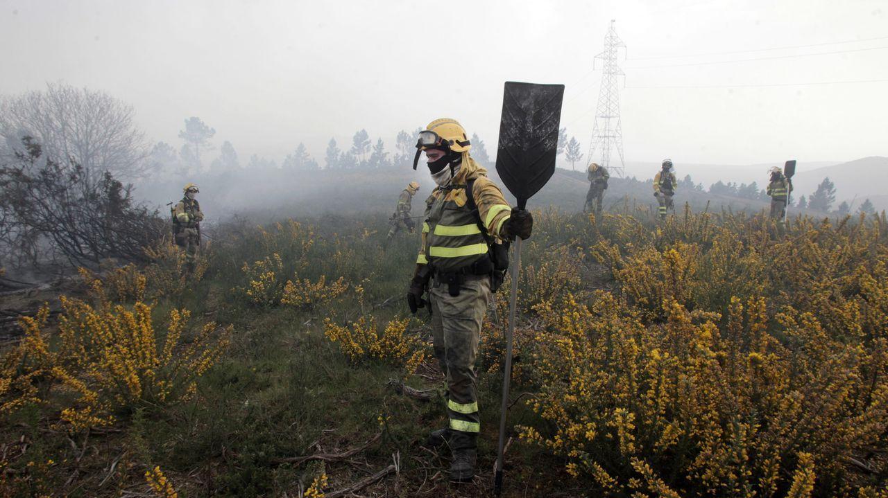 La Reserva Nacional de Caza de Os Ancares al descubierto.Una vista aérea del incendio de Meiraos tomada por los servicios de extinción