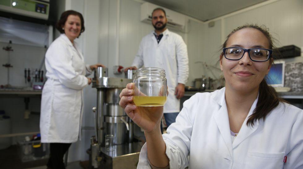 Carmen Salinero, en segundo plano, dirige el equipo de investigadores que ha implementado el innovador sistema.