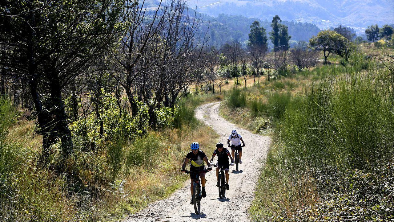 Un grupo de ciclistas atraviesan una de las zonas castigadas por los incendios de 2017
