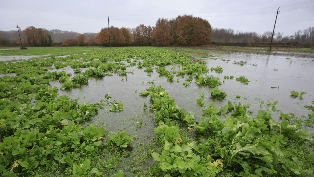 Numerosas zonas de la provincia -en la imagen, Canabal, en Sober- quedaron anegadas por el temporal