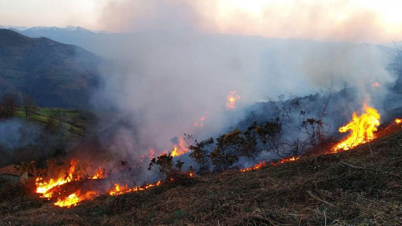 Guardia civil, incendios, incendio, fuego.Imagen de un incendio en Asturias