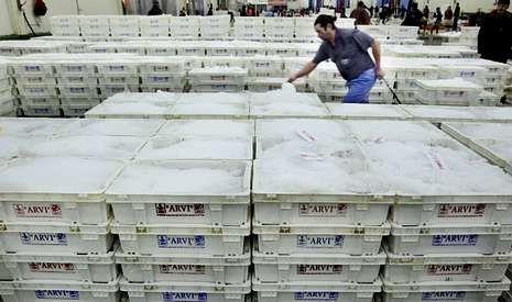 Aunque las descargas de pesca en se redujeron el pasado año un 7 % respecto del récord del 2012, se mantuvo el valor ocomercial.